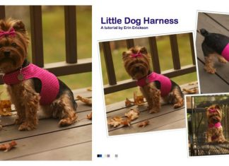 Little Dog Harness Free Sewing Pattern