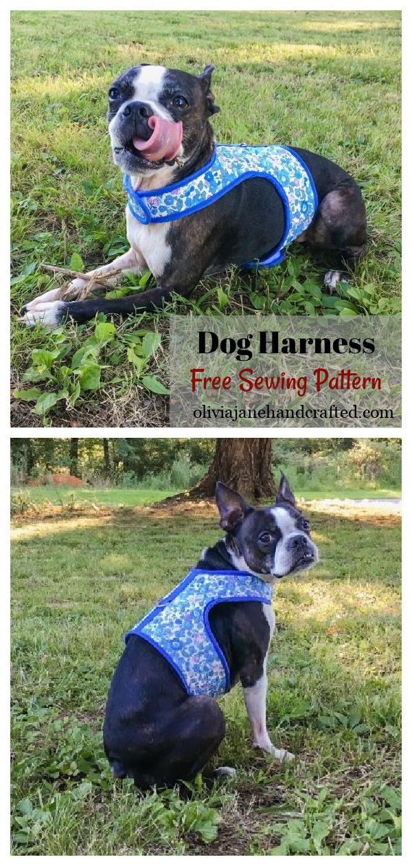 Dog Harness Free Sewing Pattern